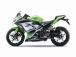 Ninja 300 zelená Limited edition